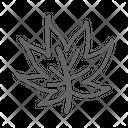 Leaf Plant Tree Icon