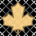 Leaf Autumn Icon