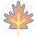 Autumn Winter Leaf Icon