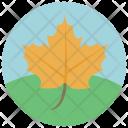 Autumn Leaf Greenery Icon