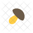 Autumn Flat Mushroom Icon