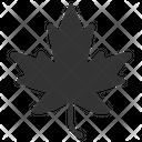 Autumn Leaf Autumn Canada Icon
