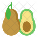 Avocado Fruit Healthy Icon