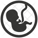 Baby Embryo Fetus Icon