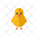 Baby Chick Icon