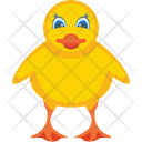 Baby Chicken Icon