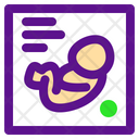 Baby Diagram Icon