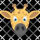 Calf Face Baby Icon