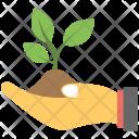 Baby Plant Soil Icon
