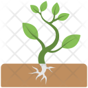 Baby Plant Icon