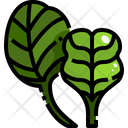 Baby Spinach Icon