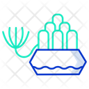 Baby Toes Plant Baby Toes Plant Icon