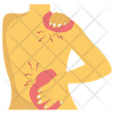 Back Bone Injury Icon