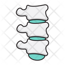 Backbone Spine Healthcare Icon