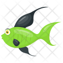 Backdrop Green Freshwater Icon