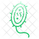 Bacteria Medical Care Icon