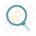 Bacteria Search Analysis Icon