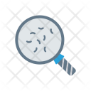 Bacteria Search Glass Icon