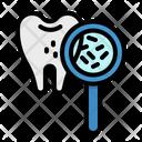 Bacteria Premolar Dental Icon