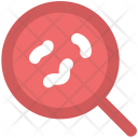 Bacteria Magnifier Searching Icon