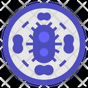 Bacterium Virus Biology Icon