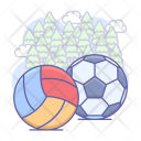 Ball Soccer Volleyball Icon