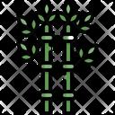 Bamboo Tree Nature Icon
