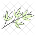 Bamboo Leaves Branch Icon