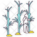 Bamboo Trees Bamboo Forest Nature Icon