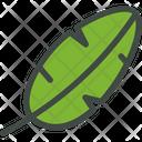 Banana Leaf Nature Icon