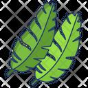 Banana Leaf Icon