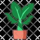 Banana Palm Icon