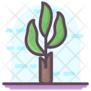 Banana Tree Icon