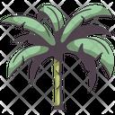 Banana Tree Banana Tree Icon