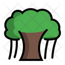 Banian Tree Plant Icon