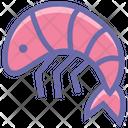Prawn Shrimp Seafood Icon
