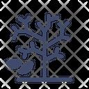 Bare Tree Icon