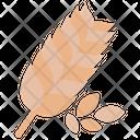 Barlay Icon
