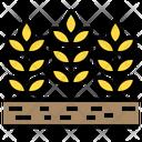 Barley Farming Garden Icon
