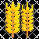 Barley Wheat Food Icon
