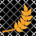 Barley Icon