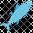 Tench Fish Chum Salmon Icon