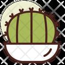 Barrel Cactus Icon