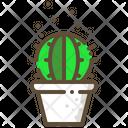 Barrel Cactus Succulent Icon