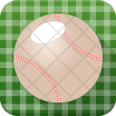 Baseball Cricket Ball Icon