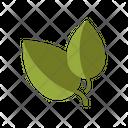 Basil Basil Paste Basil Seeds Icon