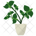 Basil Potted Plant Icon