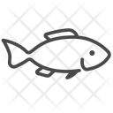Bass Fish Fish Life Icon