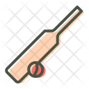Bat Cricket Ball Icon