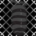 Bathynomus Doederleinii Icon